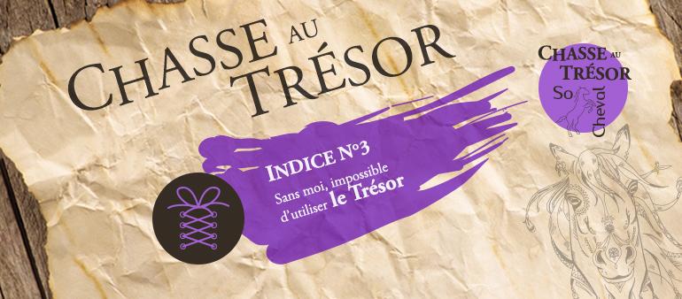 Indice n°3 de la Chasse au Trésor de So Cheval de l'été 2017