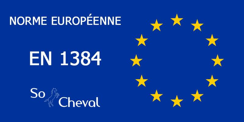 Norme européenne en 1384