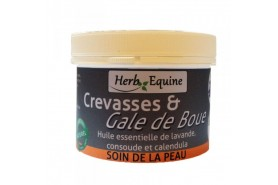Crevasses & Gale de Boue
