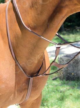 Martingale à anneaux élastique Brio
