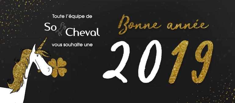 Toute l'équipe de So Cheval vous souhaite une Bonne Année