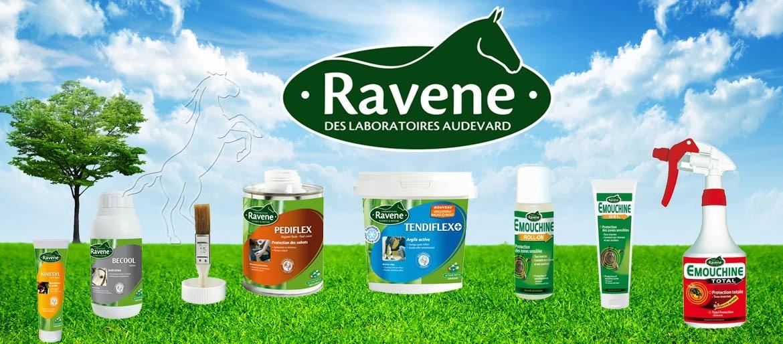 Tous les produits Ravene